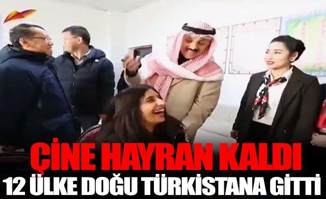 doğu türkistan çin zulmü sebebi